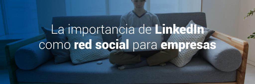 experto en redes sociales
