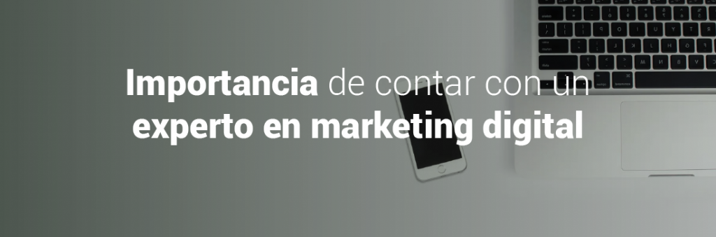 Experto marketing digital