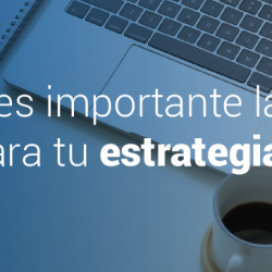 experto estrategia de marketing digital